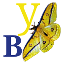 YELLOWBLUE PUBLISHING - We specialise in subjects that are on the cutting edge of awareness and understanding.