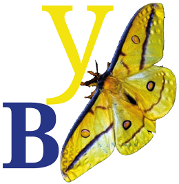 Yellowbluepublishing Logo